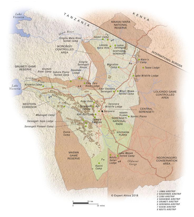 The wildebeest migration | masai mara migration